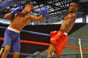 Many rivalry promises to be for the shape of the Guerreros del Mayo, who are included among the favorites to obtain the crown of the Cuban boxing.