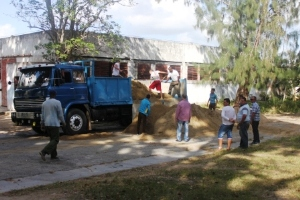 Progress of the Constructive Movement in Municipality of Camagüey