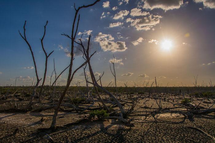 Cuba acciona en el Caribe ante cambio climático