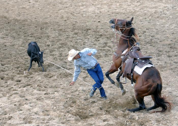 Torneo triangular de Rodeo en Camagüey