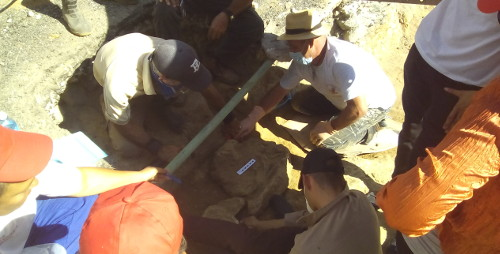 Find human remains in archaeological excavation