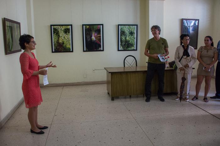 Artista camagüeyano Nazario Salazar inaugura exposición en galería del periódico Adelante
