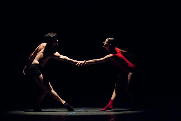 Hola y adiós para Acosta Danza desde Camagüey